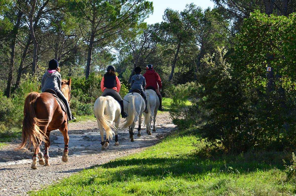 Disciplines équestres, Domaine équestre de Maruejols, randonnée