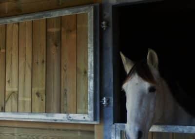 Pensions chevaux,Domaine équestre de Maruejols, box
