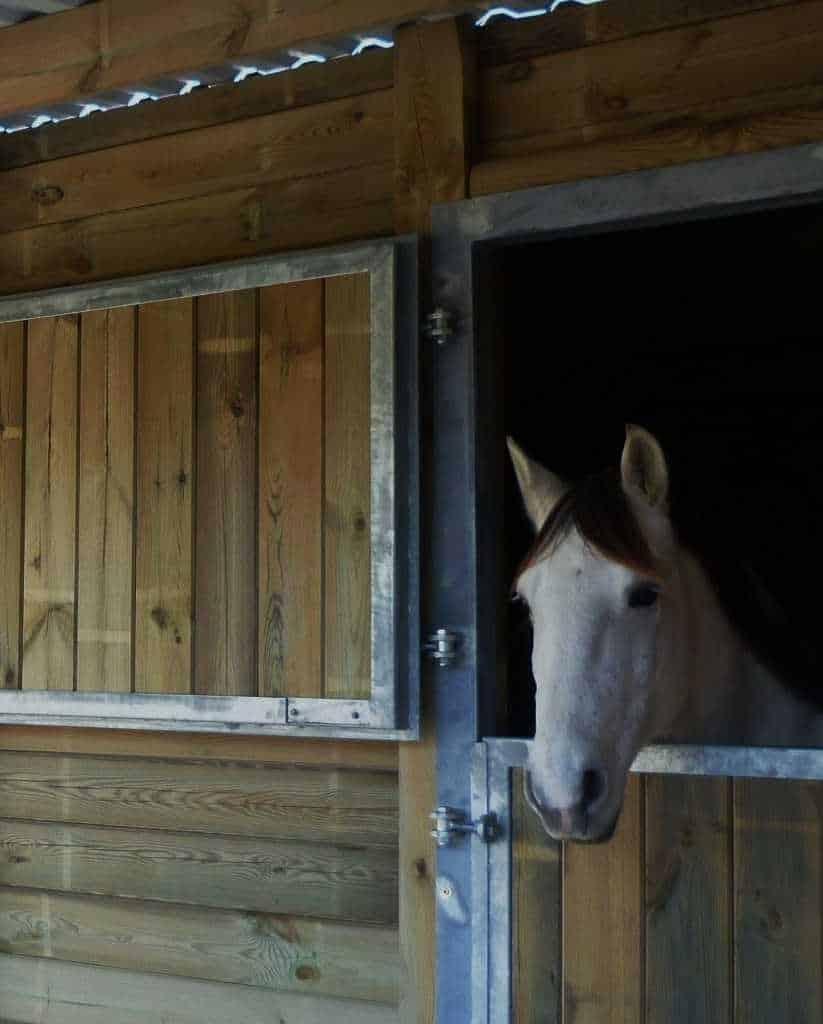 centre équestre Nîmes : box pour chevaux, Domaine équestre de Maruejols