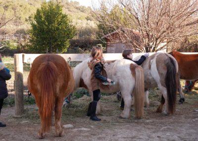 journée poney, Domaine équestre de Maruejols