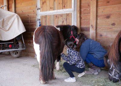 dem poney 2, Domaine équestre de Maruejols