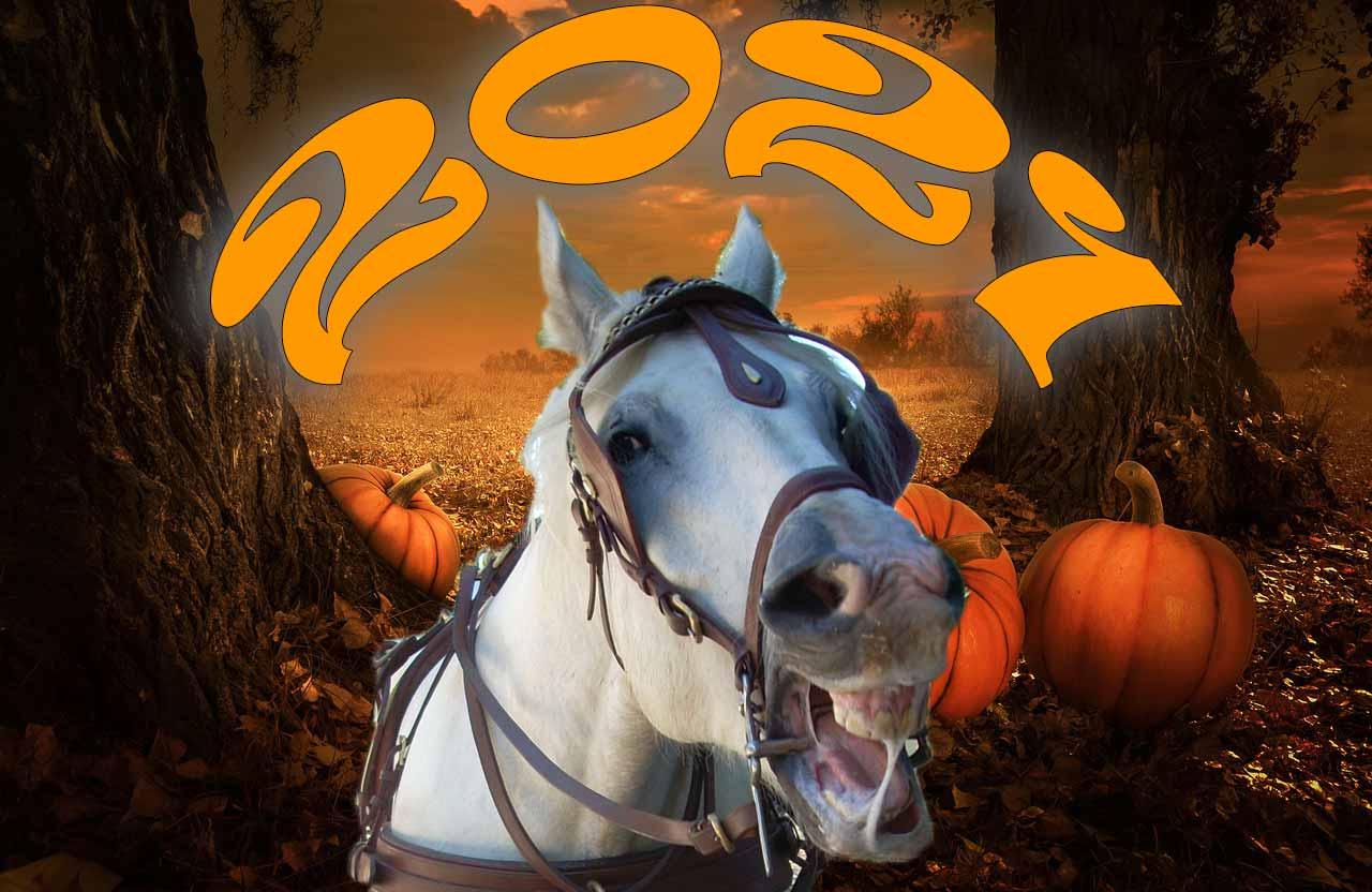 Journée halloween chevaux, pour grands enfants, domaine équestre de maruejols